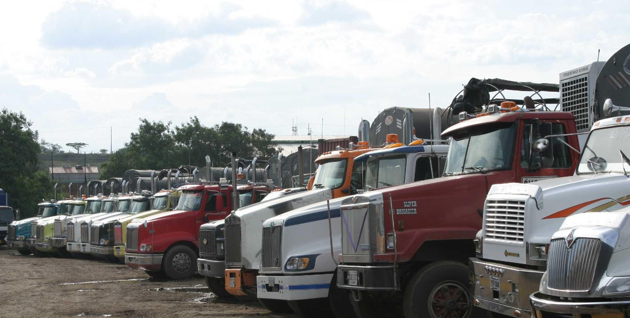 restrición vehículos de carga en junio
